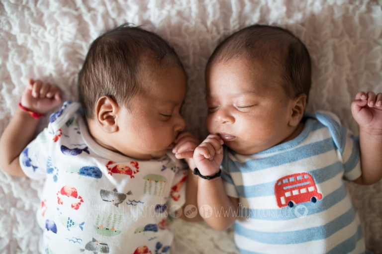 baby twin boys photo